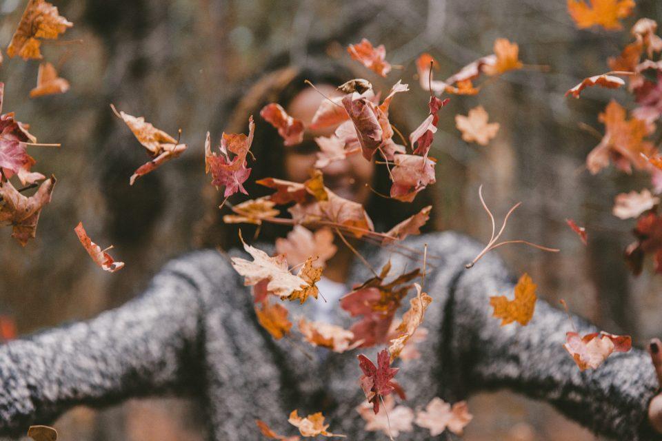 najaar autumn